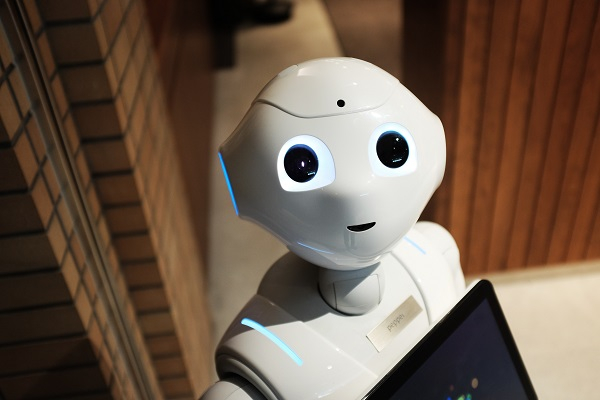 AI In The Learning Domain