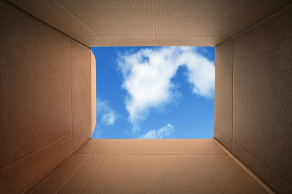 Leadership Development: Think Like There Is No Box